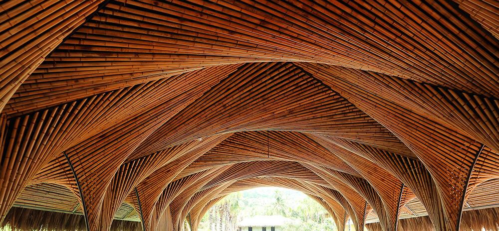 چوب بامبو در معماری